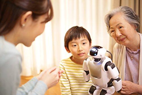 Palmi(パルミー) 二足歩行 コミュニケーション ロボット
