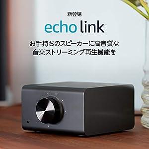 Echo Link: 高音質な音楽ストリーミングをお手持ちのステレオシステムに