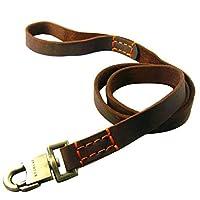広げられた犬の鎖、一流の黄色い革独特な編むことおよび亜鉛合金の付属品は大きいおよび中型の犬のために適した耐久および耐久です Suture S