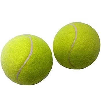 Be Active(ビーアクティブ) 硬式テニスボール 2P BA-5182