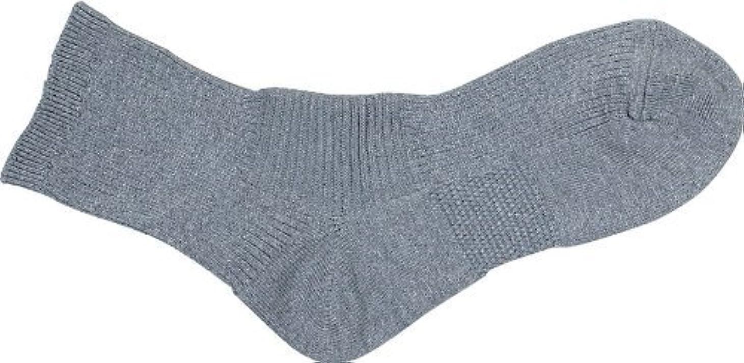 服を洗うハイライトシャープエンバランス サポートソックス M(22~24cm) グレー T4542