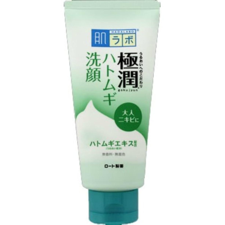 前部セレナいわゆる肌ラボ 極潤ハトムギ洗顔フォーム 100g × 5個セット