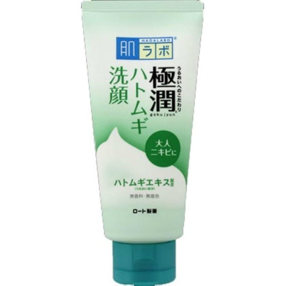 素晴らしさライバル協会肌ラボ 極潤ハトムギ洗顔フォーム 100g × 60個セット