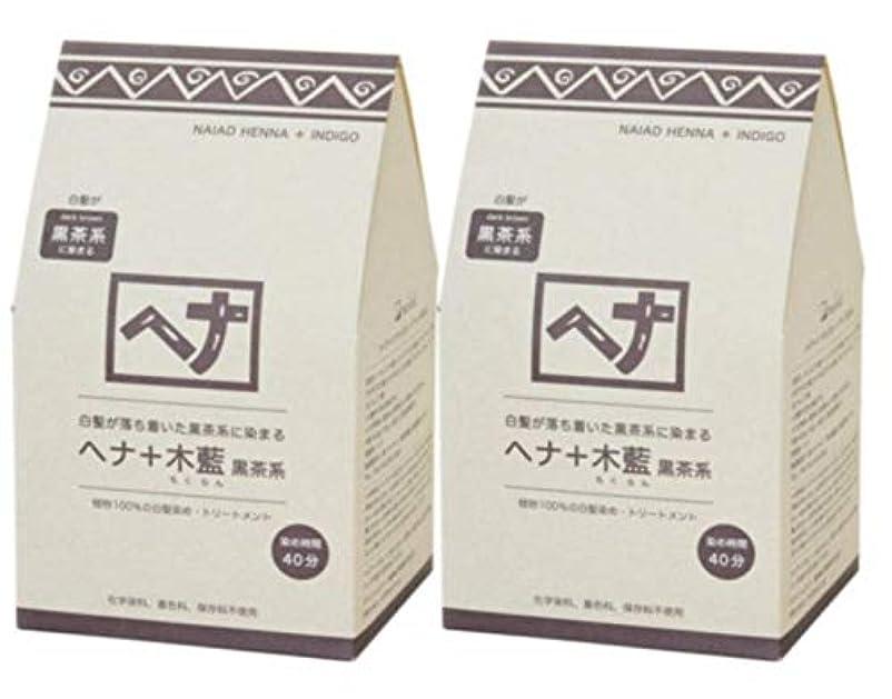 第二にアイザック器具Naiad(ナイアード) ヘナ+木藍 黒茶系 400g 2個セット