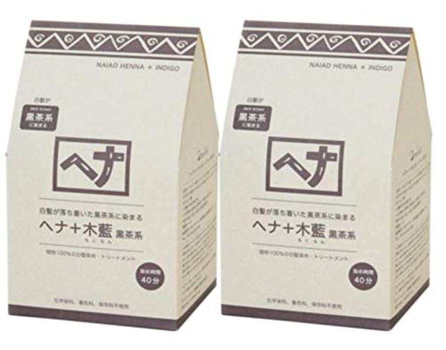 トランザクション月曜グリルNaiad(ナイアード) ヘナ+木藍 黒茶系 400g 2個セット