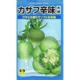【種子】大根 カザフ辛味大根 5g