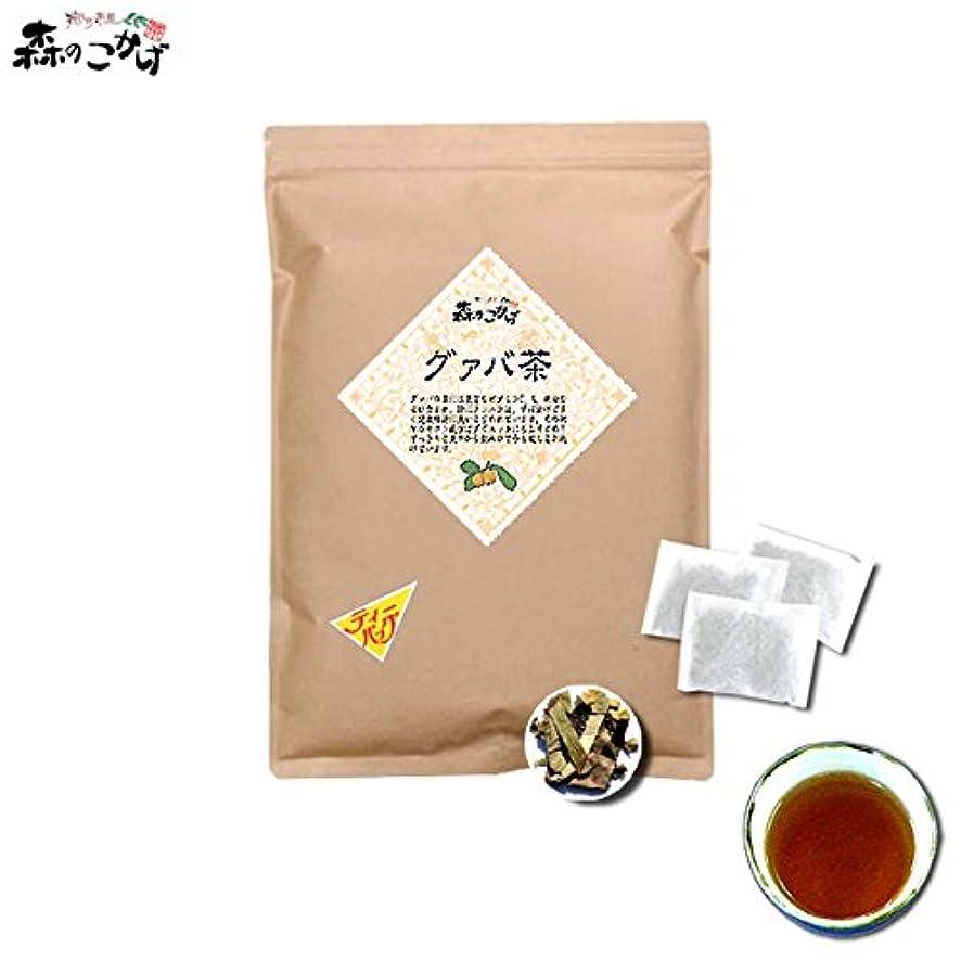 保全葉を拾うがんばり続ける森のこかげ グァバ茶 2g×100p ガバ茶 100% B