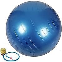 Sulyss バランスボール 65cm ヨガボール ポンプ付き アンチバースト仕様 耐荷重225kg エクササイズ・体幹トレーニング・ダイエット用 一年メーカー保証