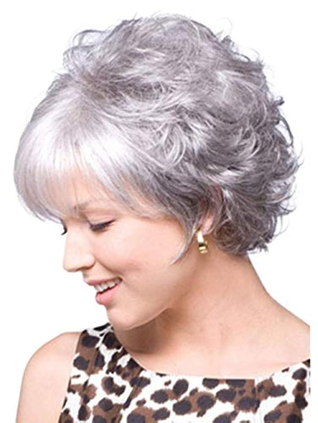 示すビスケットひいきにするウィッグキャップ付きパーティーコスプレ用女性ショートシルバーグレーヘアウィッグ (Color : Gray+Silver)
