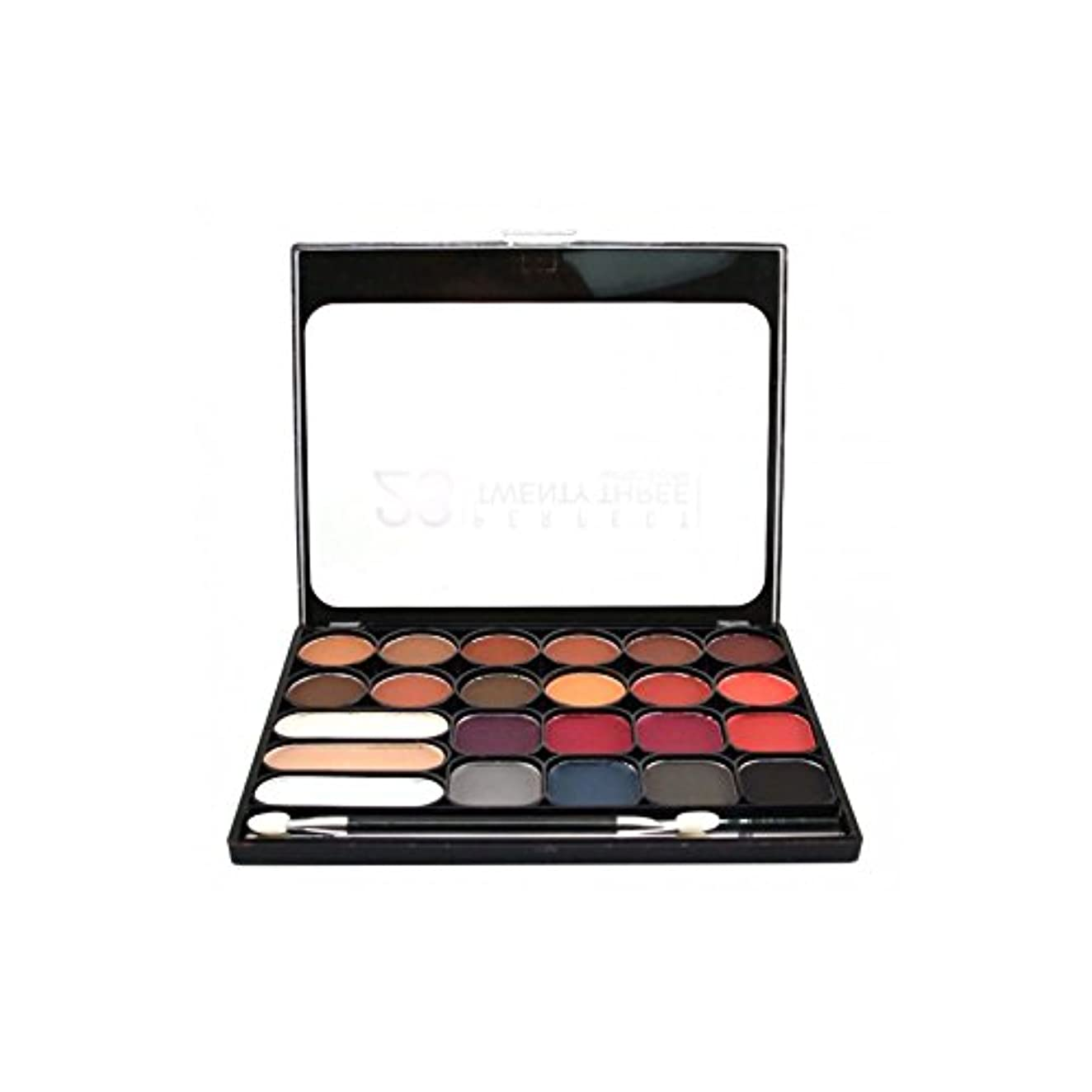 より良い書く帰するNICKA K Perfect Twenty-Three Colors (Matte) Eyeshadow Palette 02 (AP9B) (並行輸入品)