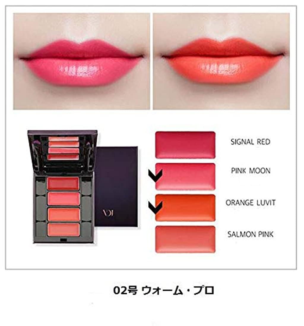 ラジカル産地厳しい[ビヂボブ] VDIVOV [プロリップパレット 5.2g] Pro Lip Palette 5.2g [海外直送品] (02号 ウォーム?プロ(Warm Pro))