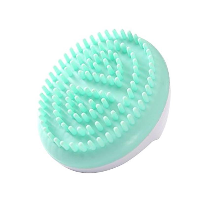精緻化対人追い越すLURROSE セルライトマッサージブラシ手持ち風呂ブラシ抗セルライト痩身美容マッサージブラシ(グリーン)
