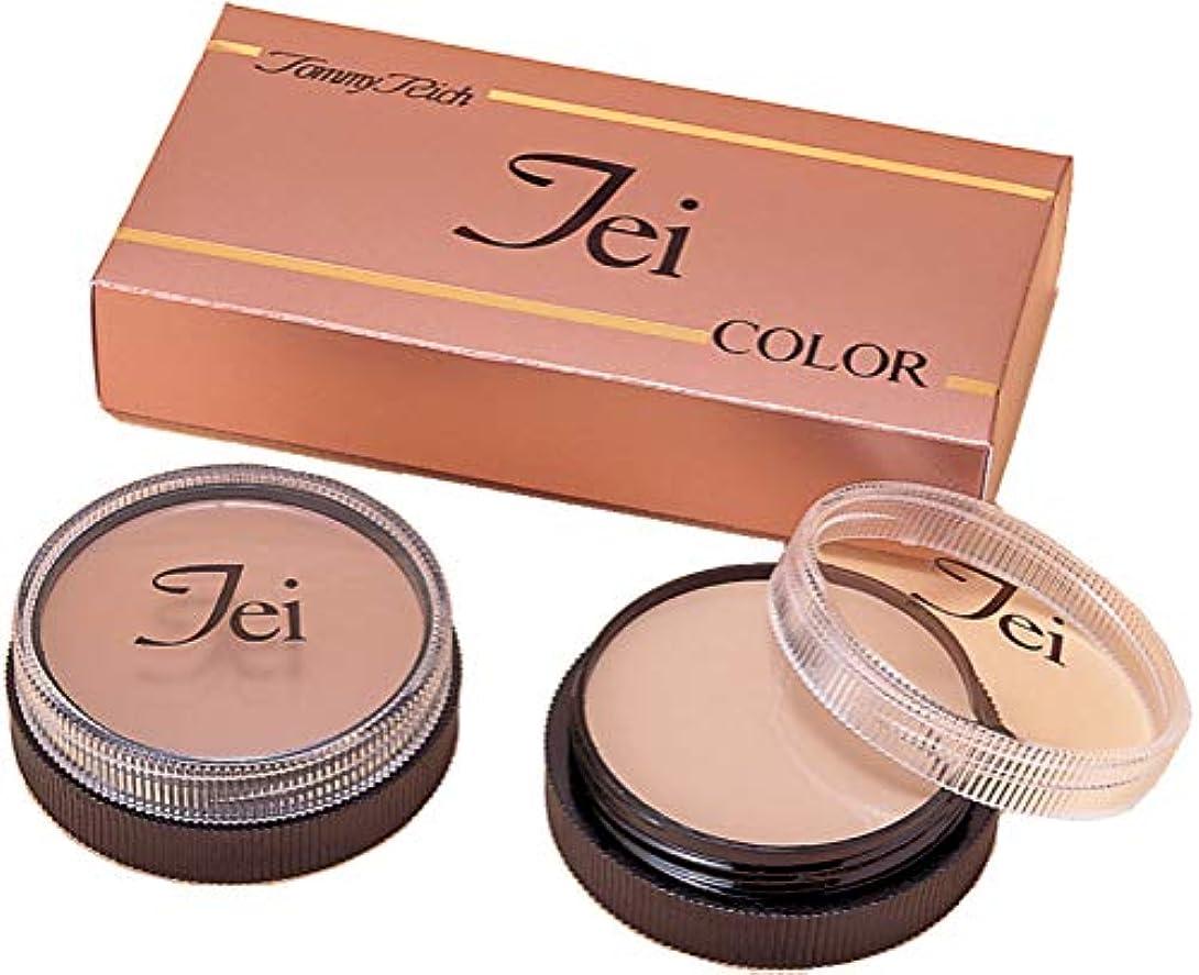 プラスチック書き込み記念色彩学に基づいたシミ・アザ・ニキビの跡消し☆濃い皮膚の変色をカバー【TEIカラー スポットカバー1&2】