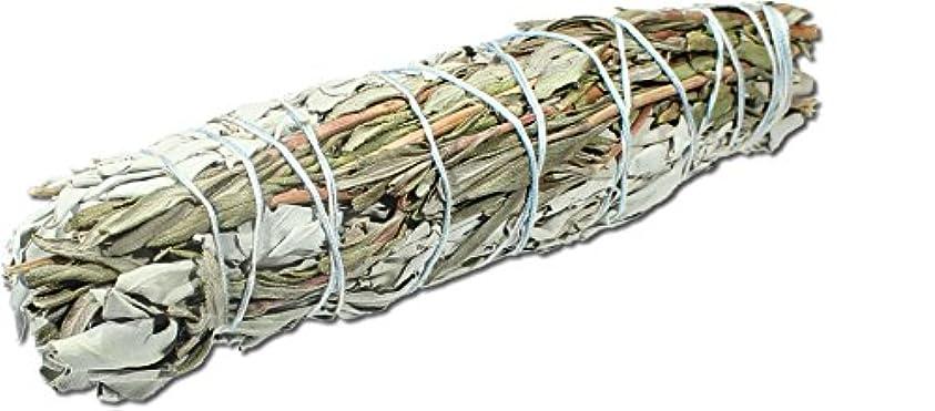 欺保守的テスピアンホワイトセージラベンダーLarge Smudge Stick – ジャンボ