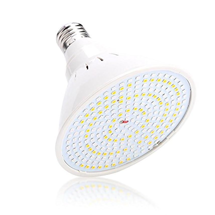 業界大胆不敵一杯3色LEDホワイトニング 美容器具肌 ライト専門療法にきびしわ除去フェイスボディケア(01)