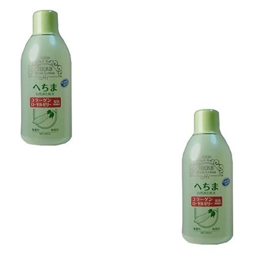 アーカイブ針遮る【まとめ買い】トプラン へちま化粧水 500ml【×2個】