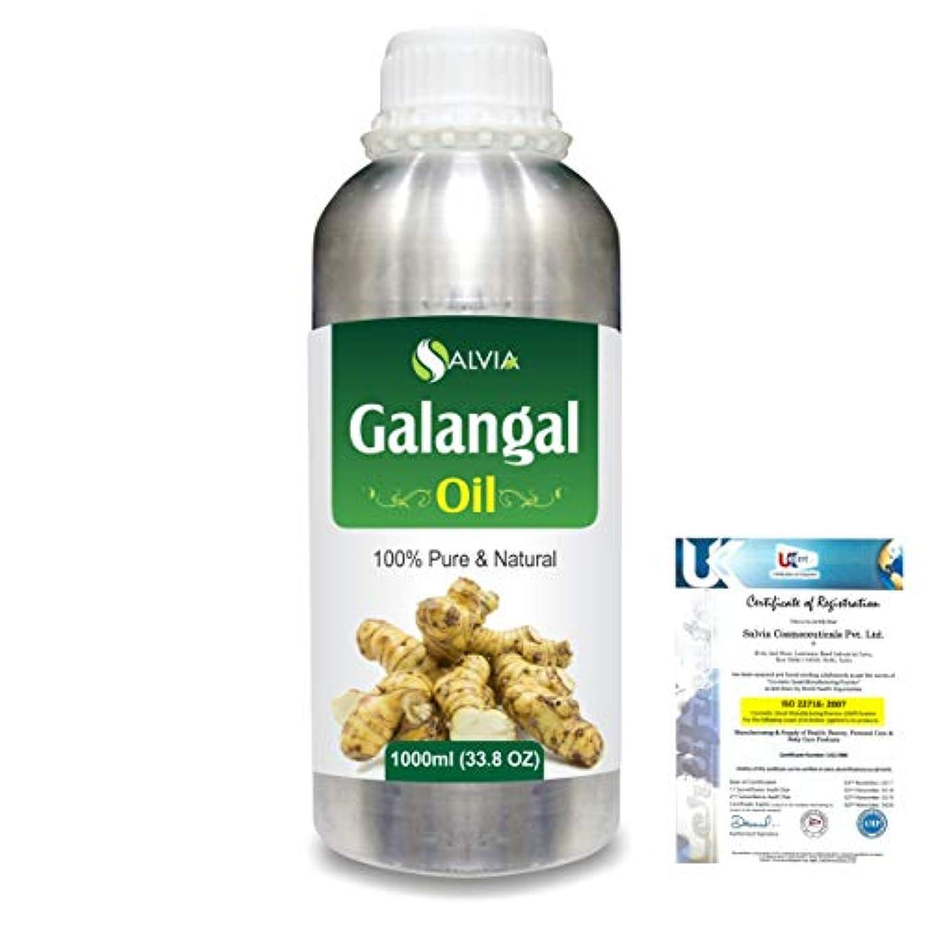 塊陰気パテGalangal (Alpina officinarum)100% Natural Pure Essential Oil 1000ml/33.8fl.oz.