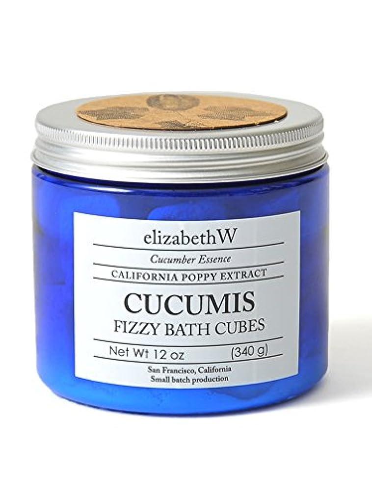 クリープ滑る鎮痛剤(エリザベスダブリュー)elizabeth W バスキューブ 340g