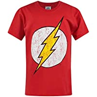DC Comics Flash Distressed Logo Boy's T-Shirt