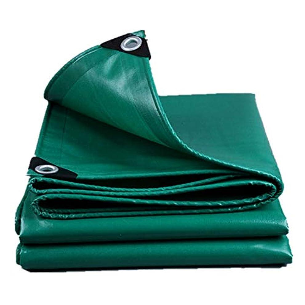 インストラクターエーカー葡萄防水シートリノリウム 頑丈な防水シートの防水シートの厚い4m X 4m、PEの防水シート防水屋外防水のための防水防水シート防水シートの防水シートの防水シート(4 X 4 M) ZHANGQIANG (色 : 緑, サイズ さいず : 6*8m)