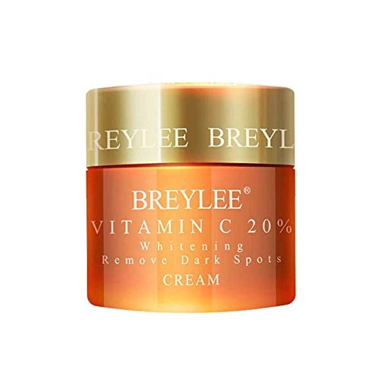 抵抗する考慮秘密のBREYLEE ヒアルロン酸 保湿クリーム 20%ビタミンC配合 美白 皮膚の引き締め (ビタミンC)