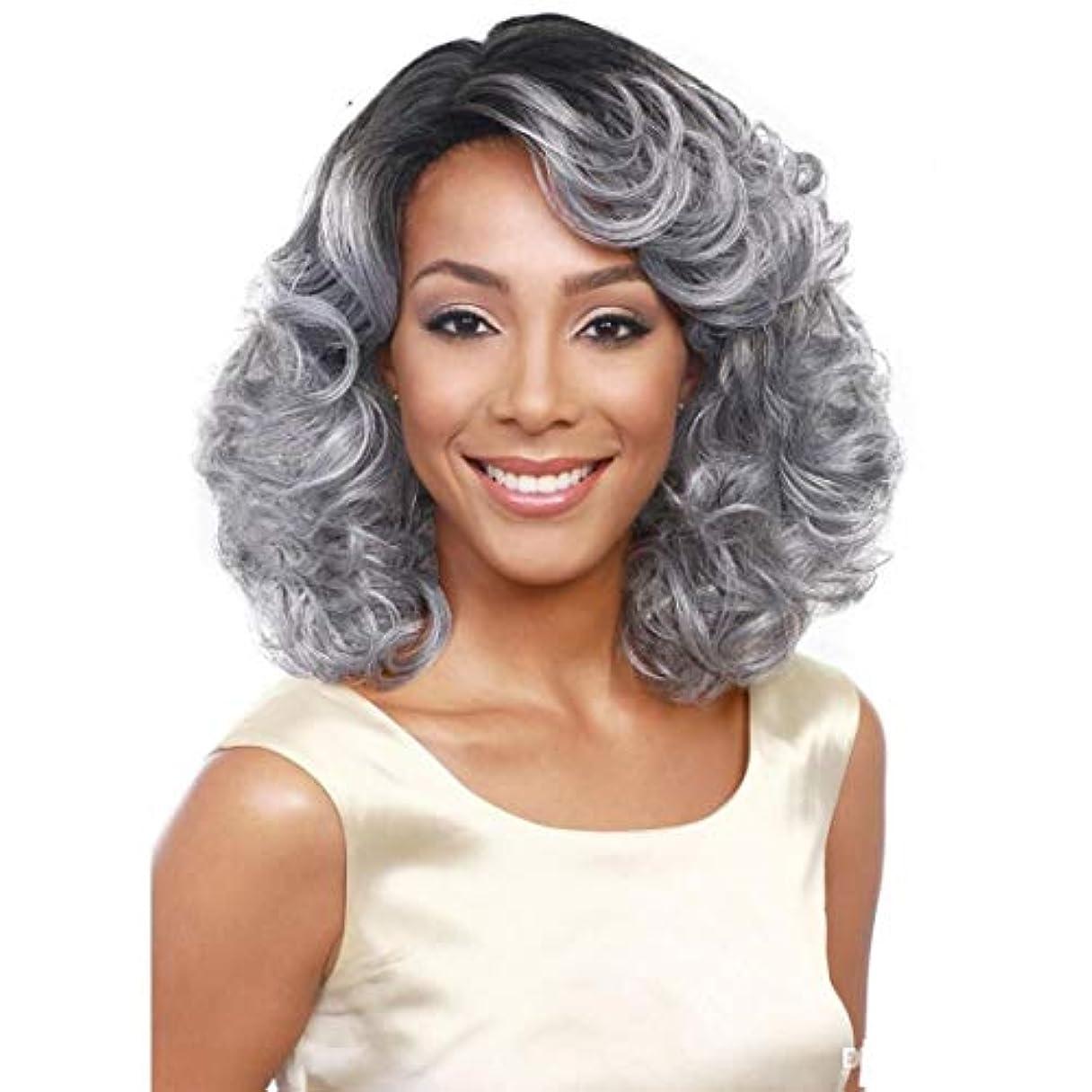 破滅体操下向きSummerys ソフト&スムーズ女性のためのグレーの短い巻き毛の化学繊維高温ワイヤーをかつら