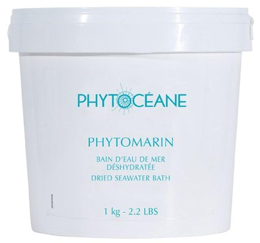ハイブリッド一次変わるフィトオセアン オードメール 1kg(入浴料)