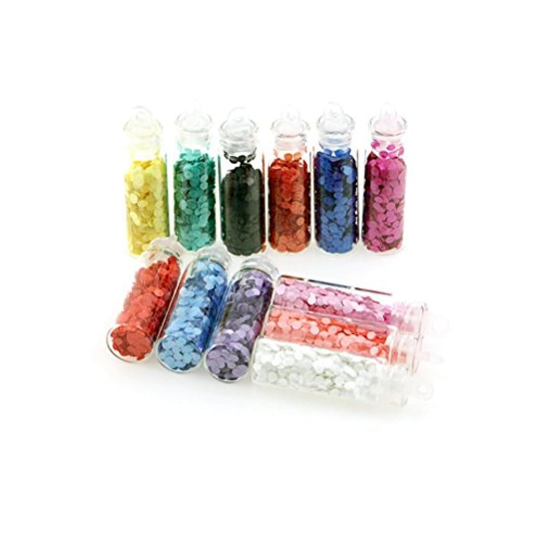 センチメンタル蓄積する鉛ネイルスパンコール ネイルカラー セット 12色 超薄い 2mm [並行輸入品]
