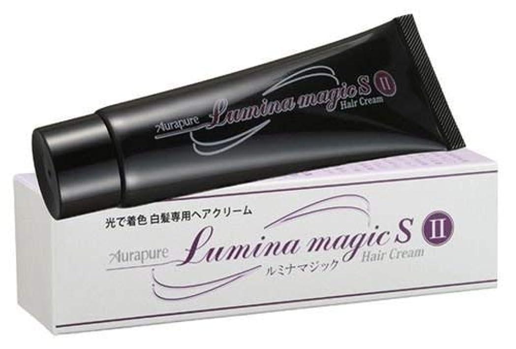 設計ブラジャーユーモラス【2個セット】 光で染まる白髪染め ルミナマジック SII 75g