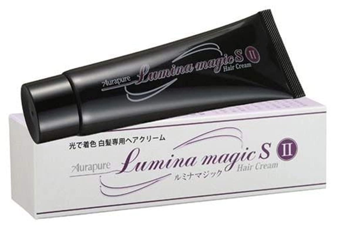 アノイ魅力エゴイズム【2個セット】 光で染まる白髪染め ルミナマジック SII 75g