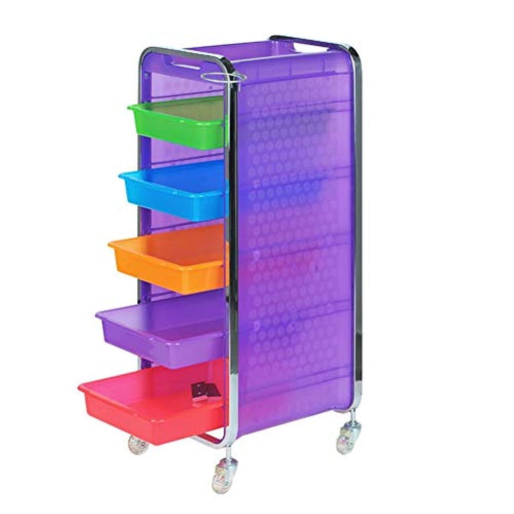 仲介者弾性振るサロン美容院トロリー美容美容収納カート6層トレイ多機能引き出し虹色,Purple,B
