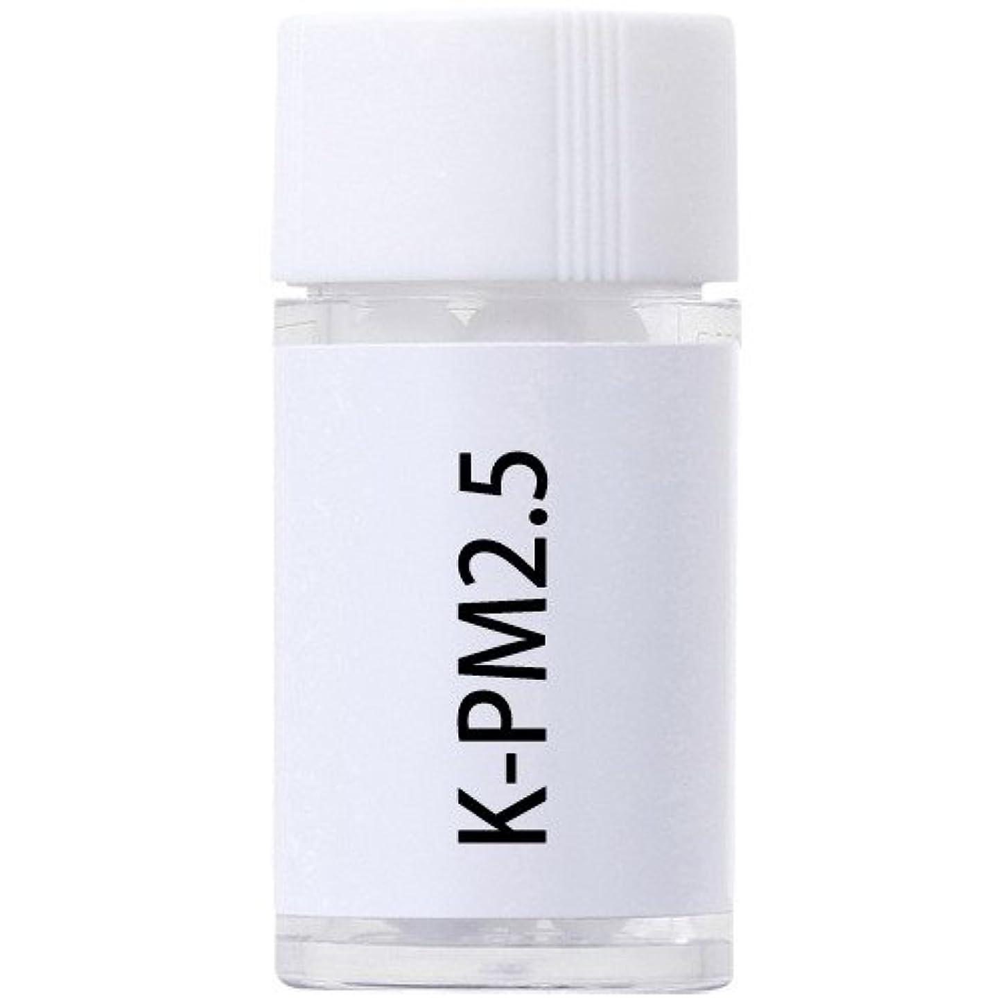 寝室を掃除する領事館吹きさらしホメオパシージャパンレメディー K-PM2.5