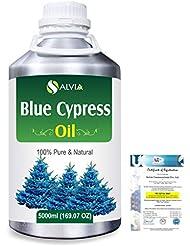Blue Cypress (Callitris Columellaris) 100% Natural Pure Essential Oil 5000ml/169fl.oz.