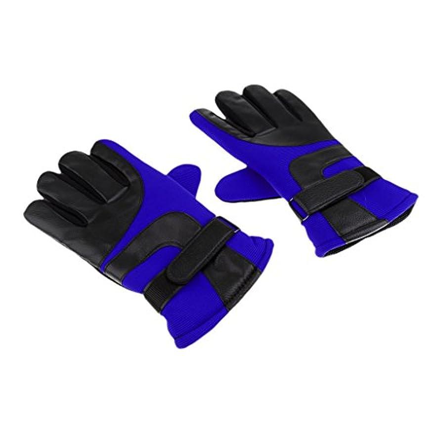 失業者四半期一貫したPerfk 携帯タッチ グローブ 手袋 摩擦性保暖 タッチスクリーン 冬 滑り止め スキー 自転車 登山用