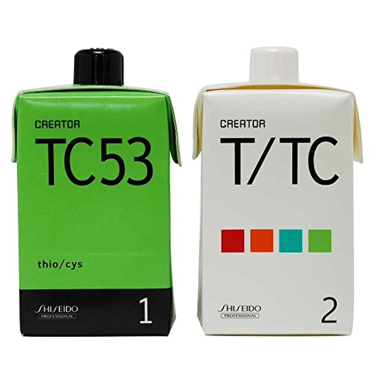 付き添い人欠点電子レンジ資生堂 クリエイター TC53(プロ用パーマ液?1剤、2剤各400ml)