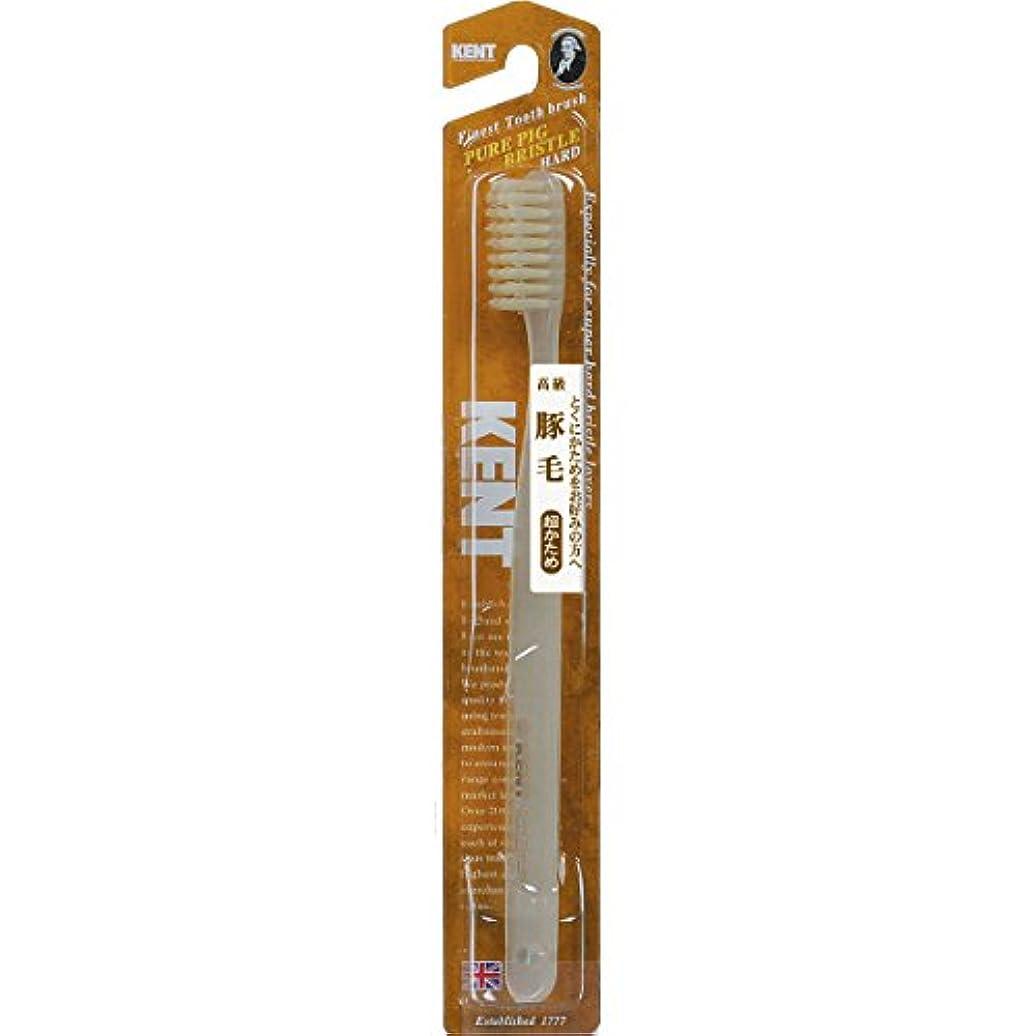 発見スポットバナナKENT 豚毛歯ブラシ ラージヘッド 超かため KNT-2433 ×6個セット