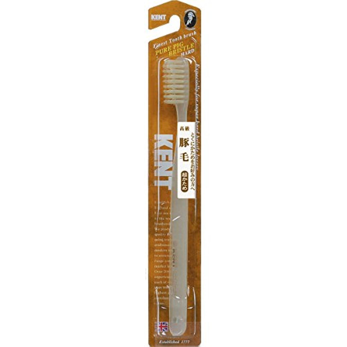 ストローク味付け加入KENT 豚毛歯ブラシ ラージヘッド 超かため KNT-2433 ×6個セット