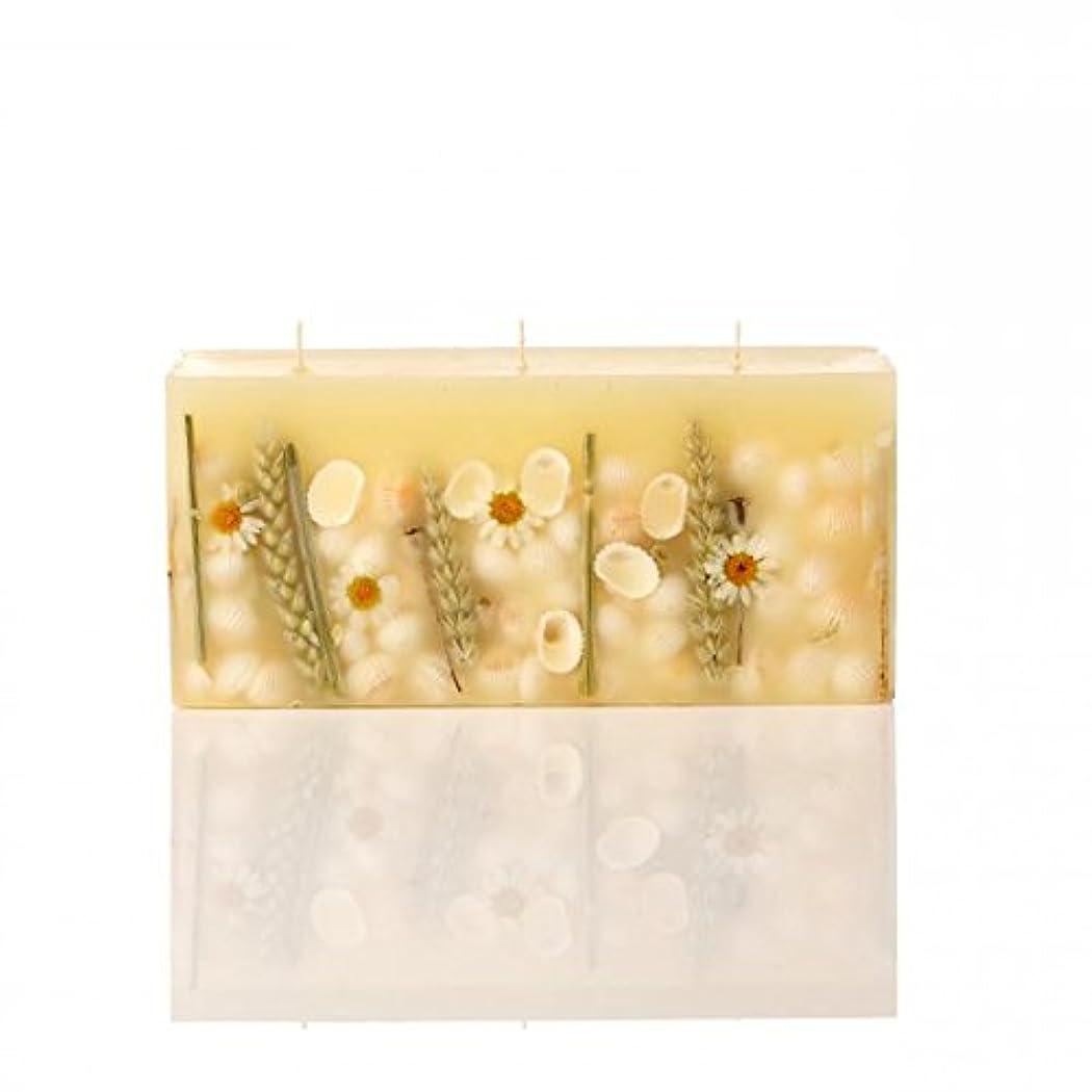Rosy Rings 3芯レンガ植物キャンドル - ビーチデイジー