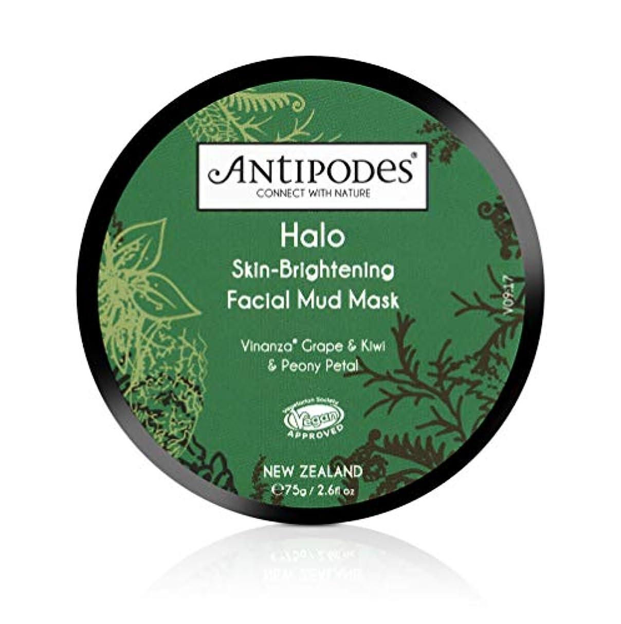 冗談でラベンダー刈るAntipodes(アンティポディース) ヘイロー ボルカニックマッドマスク