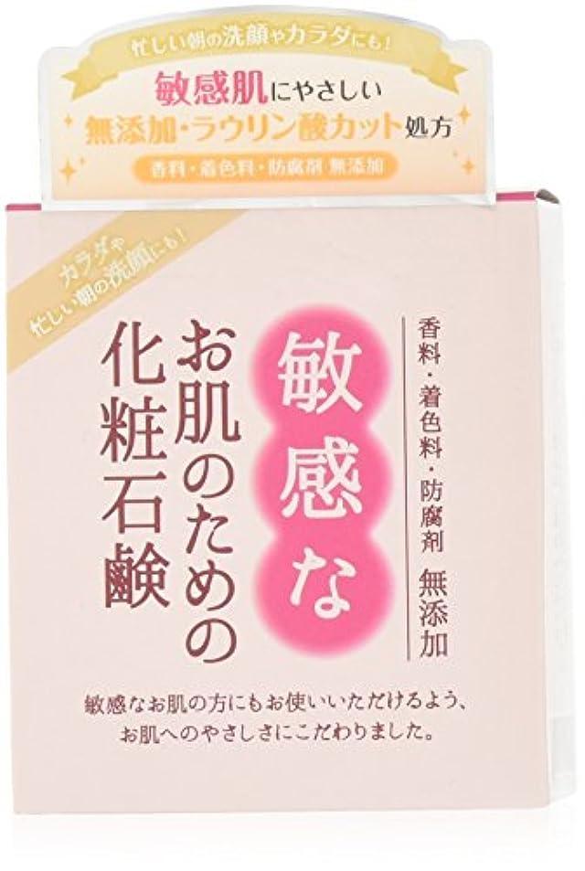 タブレット同志生む敏感なお肌のための化粧石鹸 100g CBH-S