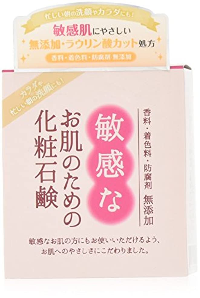 メッシュのためミネラル敏感なお肌のための化粧石鹸 100g CBH-S