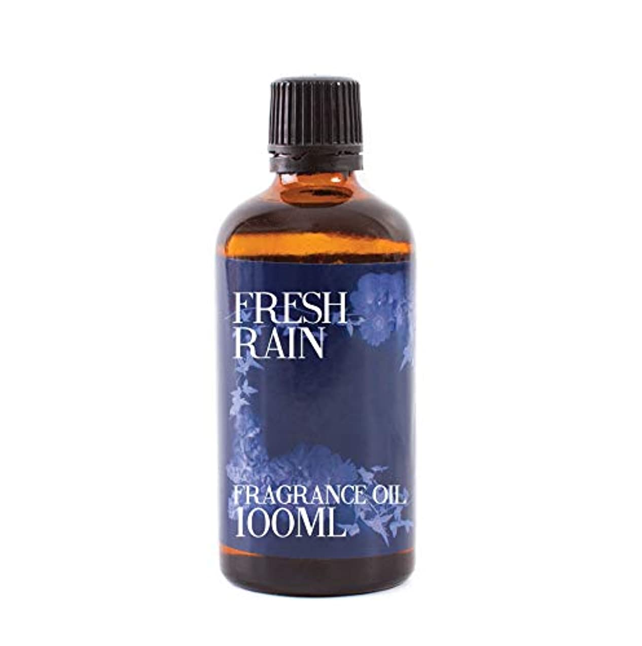 体系的に漏れエレガントMystic Moments | Fresh Rain Fragrance Oil - 100ml