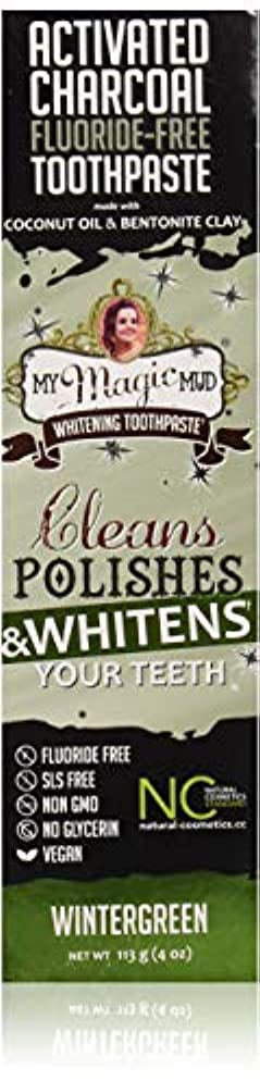 仮定する遠い気づくマイマジックマッドホワイトニング歯磨き粉 (ウインターグリーン)