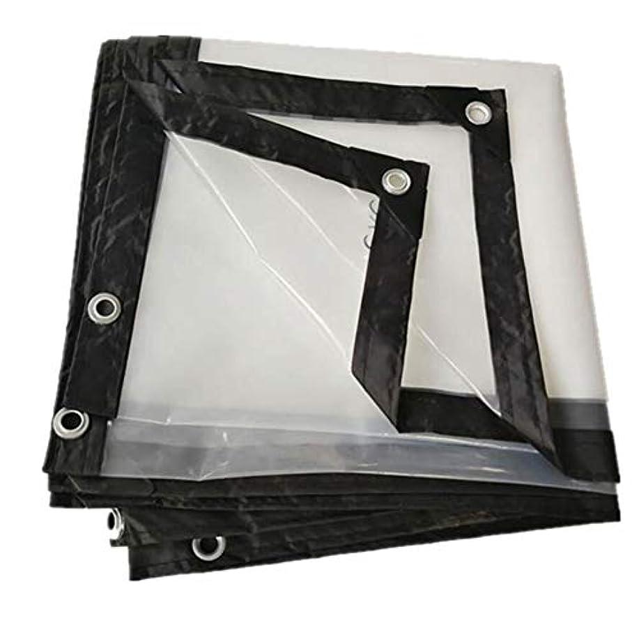 普及幾何学幾分SHYPwM 防水シート防水防水シートプラスチック布透明な厚いターポリン (サイズ さいず : 5x8m)