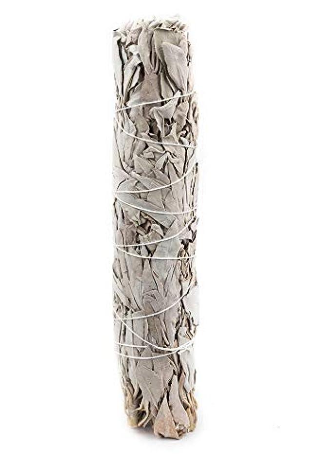 バーマド反発プレゼンターVivally Naturals エクストララージ プレミアム カリフォルニアホワイトセージ 8インチ スマッジスティック