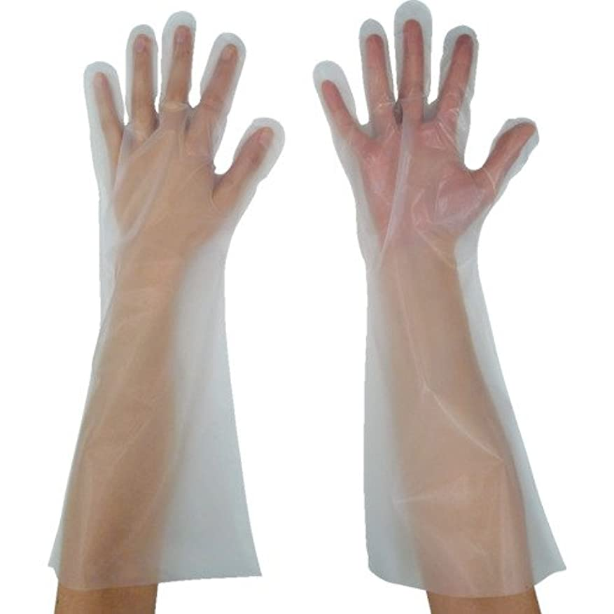闇ユニークなさせる東京パック 緊急災害対策用手袋ロング五本絞りM 半透明 KL-M