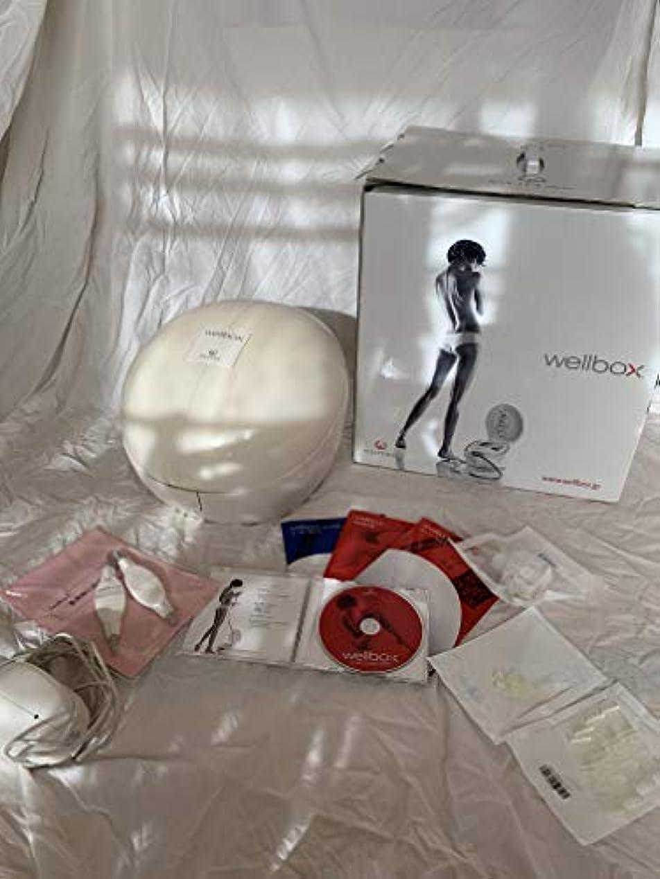 静かなランチョン消毒するwellbox(ウェルボックス)家庭用エンダモロジー【国内正規品】LPG社製 momoeri Styleブック付き