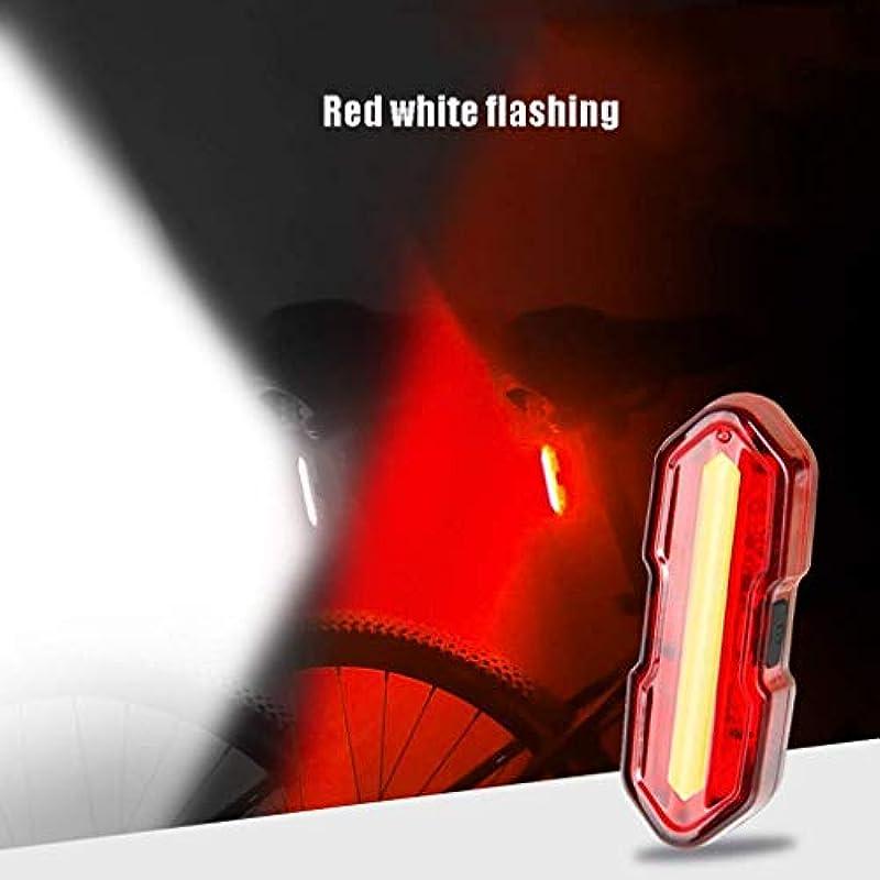 商品スタウト兄ZAQXSW マウンテンバイクテールライトUSB充電自転車ライト2色安全警告灯アクセサリー (色 : Red White)
