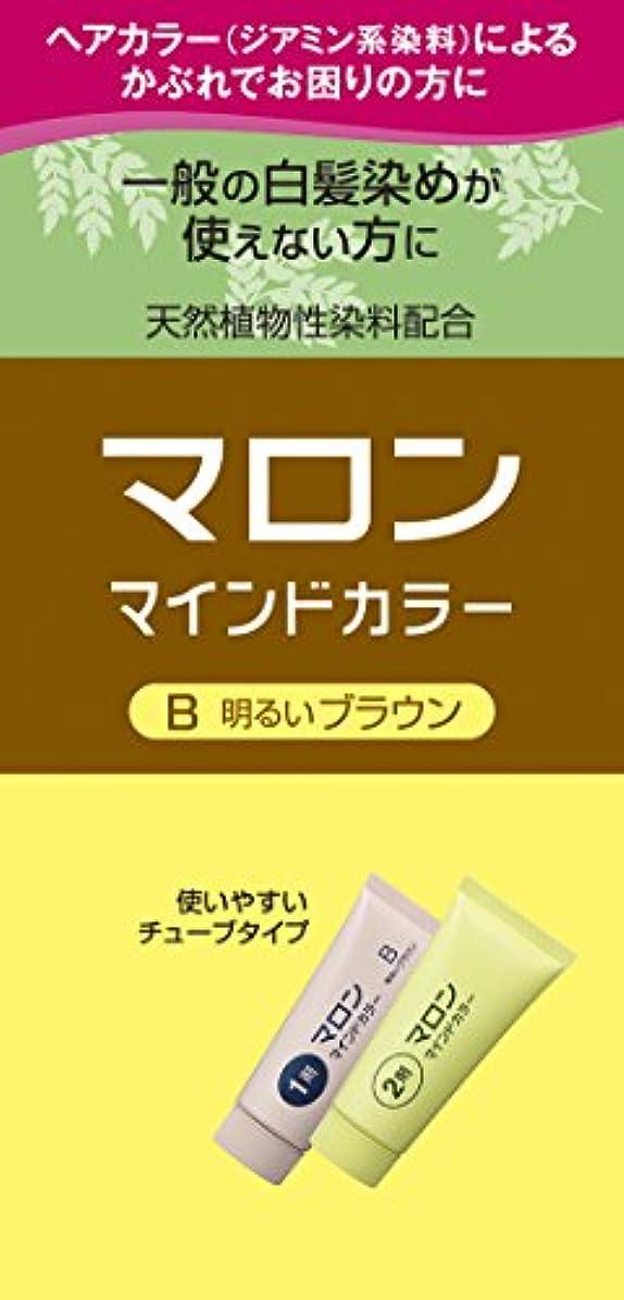 楽しい精査スモッグマロン マインドカラー B 明るいブラウン 140g [医薬部外品]