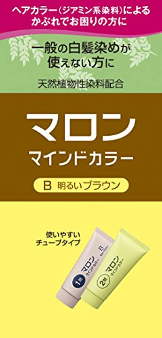 トマト近代化する酸っぱいマロン マインドカラー B 明るいブラウン 140g [医薬部外品]